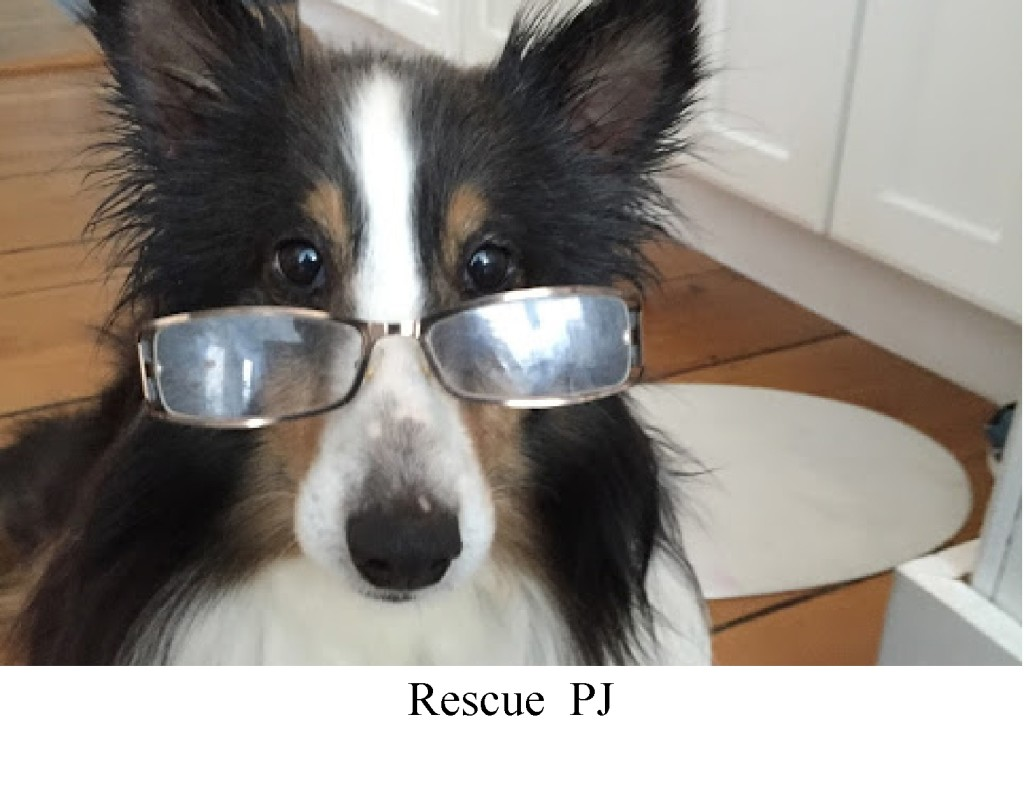 PJ glasses 1