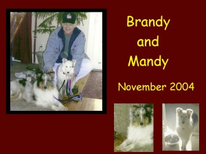 +2004 Mandy and Brandy