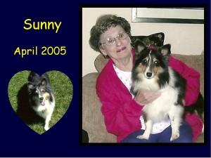 +2005 Sunny