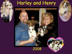 +2008 Harley Henry