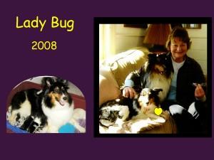 +2008 Lady Bug
