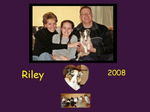 +2008 Riley