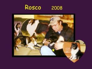 +2008 Rosco