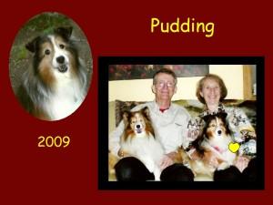 +2009 Pudding