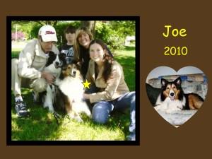 +2010 Joe