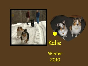 +2010 Kalie