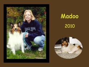 +2010 Madoo