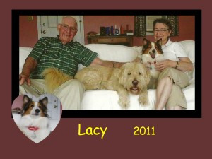 +2011 Lacy