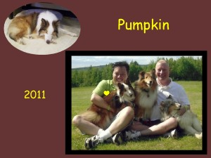 +2011 Pumpkin