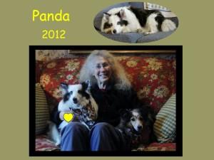 +2012 Panda
