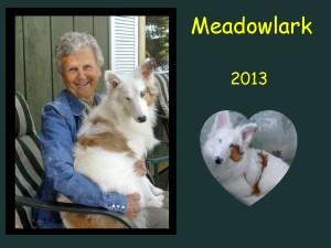+2013 Meadowlark