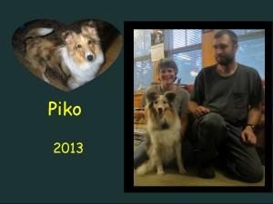 +2013 Piko