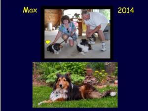 +2014 Max
