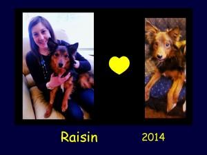 +2014 Raisin