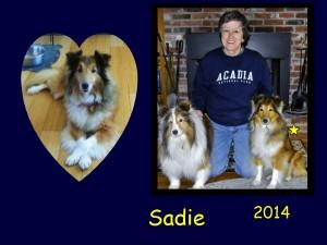 +2014 Sadie