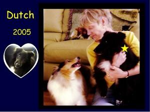 2005 dutch