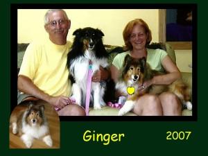 -2007 Ginger