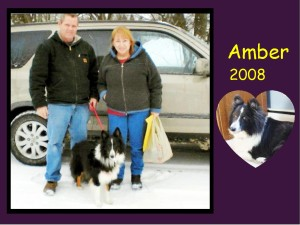 -2008 Amber