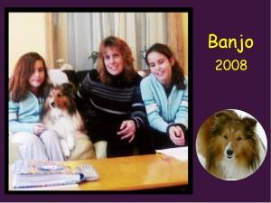 -2008 Banjo