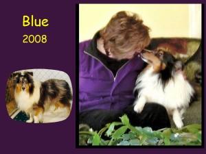 -2008 Blue