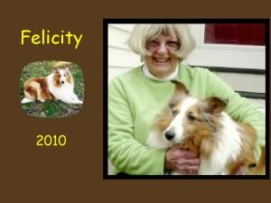 -2010 Felicity