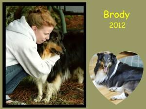 -2012 Brody