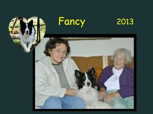 -2013 Fancy