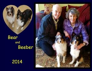 -2014 Bear Beeber