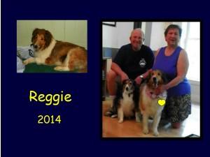-2014 Reggie
