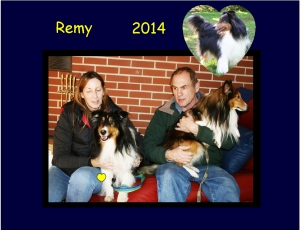 +2014 Remy