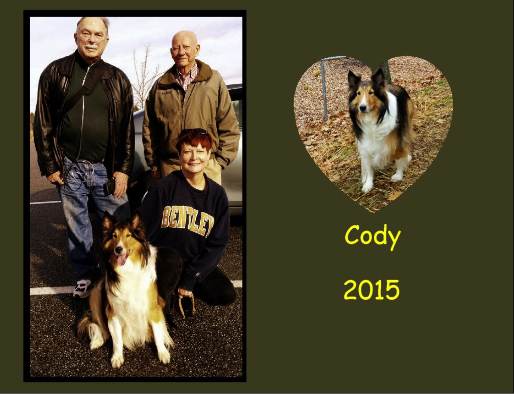 +2015 Cody