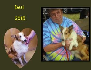 +2015 Desi-Shasha