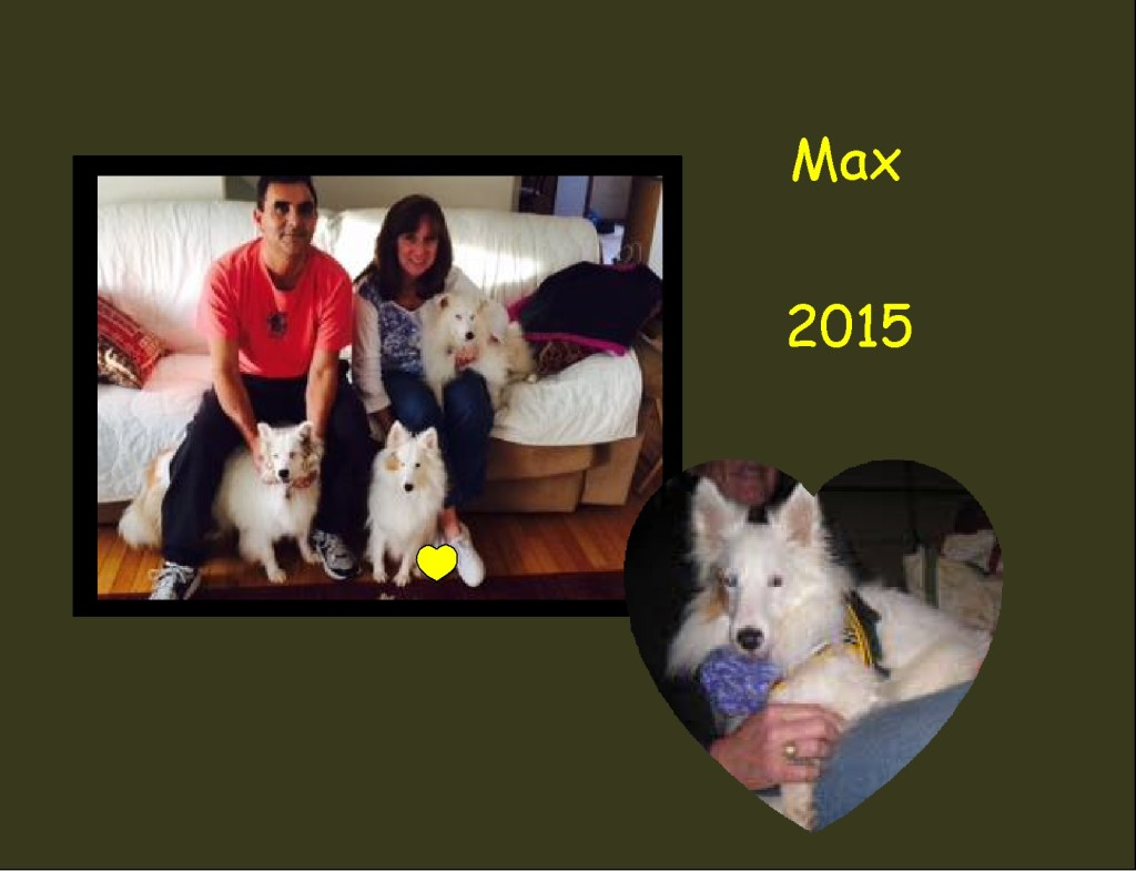 +2015 Max