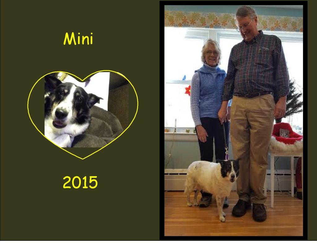 +2015 Mini