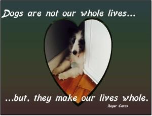 lives whole - Skye 2