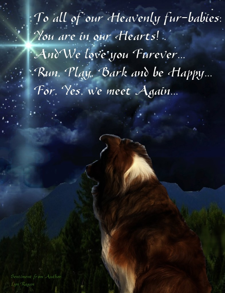 Furbabies in heaven x