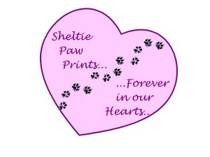 Paw prints in heart